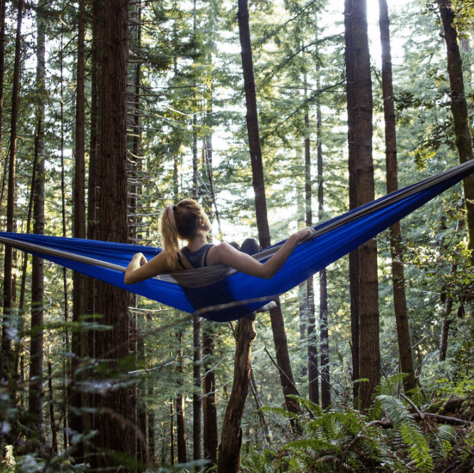 Wildhorn Outfitters Outpost II Hammock Silver/Blue